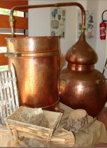 musee tour des parfums